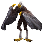 Click to download the 'Aarakocra'