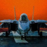 Click to see the full-sized image: 'Tomcat on the Ramp'.