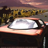 Click to see the full-sized image: 'Corvette in the Desert'.