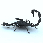 Scorpion/ Arachnid Scorpionida (for Vue)