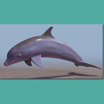 Click to see information about the 'Bottle Nosed Dolphin (for 3D Studio Max)'.