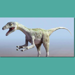 Click to see information about the 'Compsognathus (for 3D Studio Max)'.