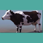 Click to see information about the 'Cow (for 3D Studio Max)'.