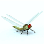 Click to see information about the 'Dragon Fly (for Vue)'.