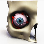 Click to see information about the 'Eye Disection (for 3D Studio Max)'.