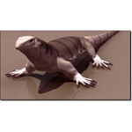 Click to see information about the 'Monitor Lizard (for 3D Studio Max)'.