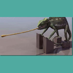 Click to see information about the 'Chameleon (for Poser)'.