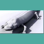 Salamander (for 3D Studio Max)