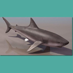 Click to see information about the 'White Shark Female (for 3D Studio Max)'.