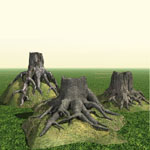 Click to see information about the 'Tree Roots (for Poser)'.