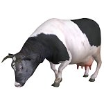 Cow - DarkAnvil (for Poser)