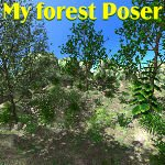 Click to see information about the 'My Forest (for Poser)'.