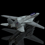 F 14 Tomcat (for Poser)