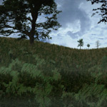 Total Textures V10: Trees & Plants