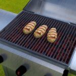 Grilled Food (for DAZ Studio)