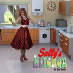 Click to see information about the 'Sally`s Kitchen (for DAZ Studio)'.