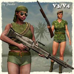 Click to see information about the 'Vietnam AddOn (V3/V4)'.