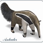 Click to see information about the 'Giant Anteater (for Poser)'.