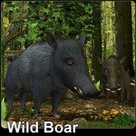 Click to see information about the 'Wild Boar (for Poser)'.